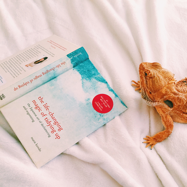 Cozying up with Gwen the Beardie and The Life-Changing Magic of Tidying up by Marie Kondo