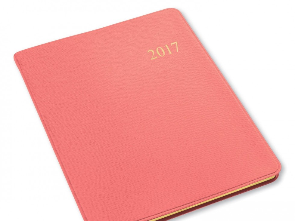 Love this 2017 planner from Amazon